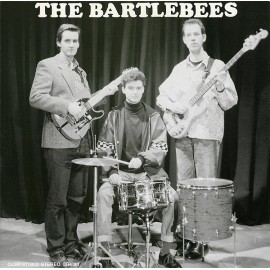 BARTLEBEES : Diary Of A Youngblood LP