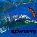 VARIOUS : CD Nevemind
