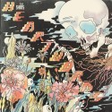 SHINS (the) : LP Heartworms