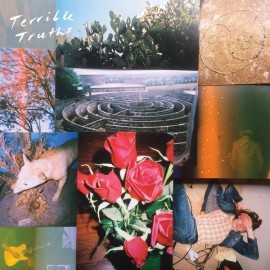 """TERRIBLE TRUTHS : LP+7"""" Terrible Truths"""