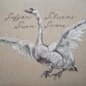 """STEVENS Sufjan : LP+7"""" Seven Swans"""