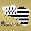 VARIOUS : CD Bretagne Et Musiques Celtiques