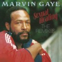 GAYE Marvin : LP Sexual Healing Remixes