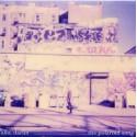 ALLO DARLIN' : The Polaroid Song