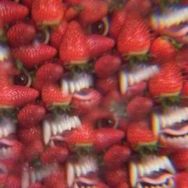 THEE OH SEES : LP Floating Coffin