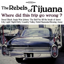 REBELS IN TIJUANA (the) : J'adore Ce Flic CDEP
