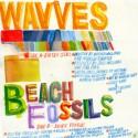 SPLIT BEACH FOSSILS / WAVVES