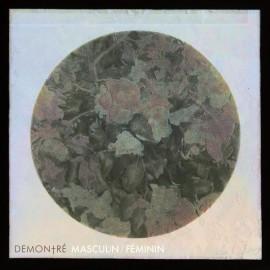 DEMONTRE : LP Masculin / Féminin