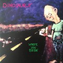 DINOSAUR JR : LPx2 Where You Been (colored)