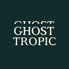 BRECHT AMEEL : LP Ghost Tropic
