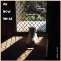 GO GET MUM : LP OK Now What