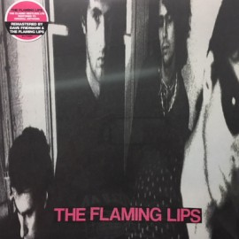 FLAMING LIPS (the) : LP In A Priest Driven Ambulance
