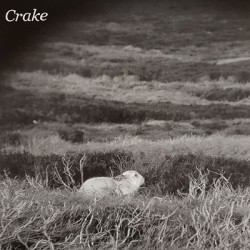 CRAKE : Enough Salt (For All Dogs)