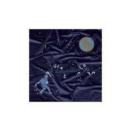 QUIET STARS : LP L'équateur