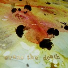 EVANS THE DEATH : Threads