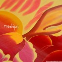 ROSEHIPS : Rosehips