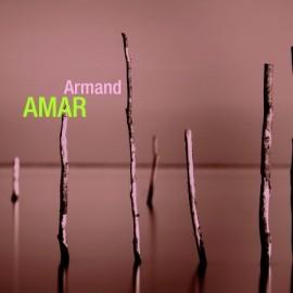 AMAR Armand : CDx2 Retrospective