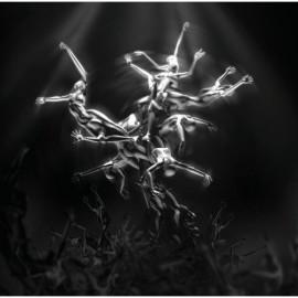GERRARD Lisa : The Silver Tree