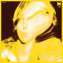 TY SEGALL : LP Twins