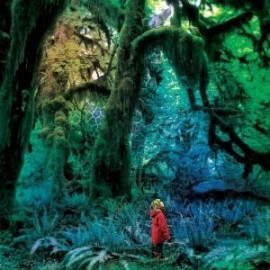JACCO GARDNER : LP Cabinet Of Curiosities
