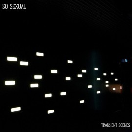 "SO SEXUAL : 2x7""EP Transient Scenes"