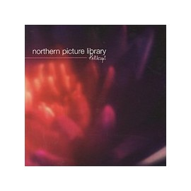 NORTHERN PICTURE LIBRARY : Postscript