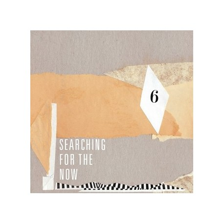 VARIOUS : Searching For The Now vol06