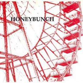 HONEYBUNCH : Walking Into Walls