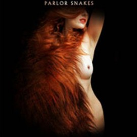 PARLOR SNAKES : CD Parlor Snakes