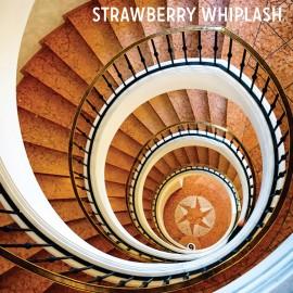 STRAWBERRY WHIPLASH : CD Stuck In The Never Ending Now