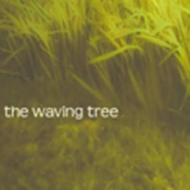 WAVING TREE (the) : Burgundy Brown