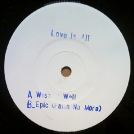 LOVE IS ALL : Wishing Well (white label)