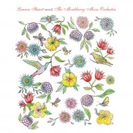 LAUREN STUART & THE MONKBERRY MOON ORCHESTRA : CD Meets