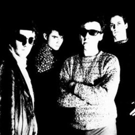 TELEVISION PERSONALITIES : LP The Painted Word