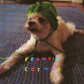 FRANKIE COSMOS : LP Zentropy