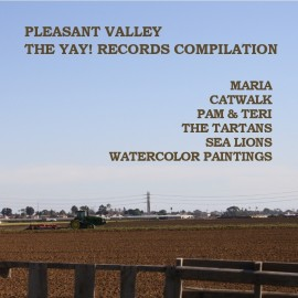VARIOUS : PLEASANT VALLEY