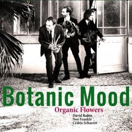 ORGANIC FLOWERS : LP Botanic Mood