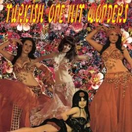 VARIOUS : LP Turkish One Hit Wonders
