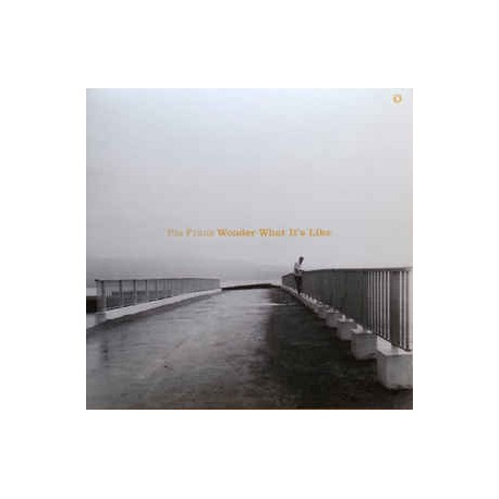PIA FRAUS : LP Wonder What's It's Like