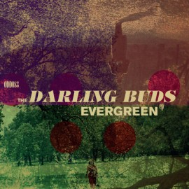 "DARLING BUDS (the) : 10""EP Evergreen"