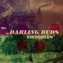 """DARLING BUDS (the) : 10""""EP Evergreen"""