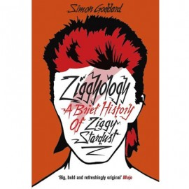 BOWIE David : Book Goddard Simon : Ziggyology