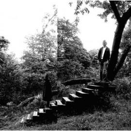 TIMBER TIMBRE : LP Timber Timbre