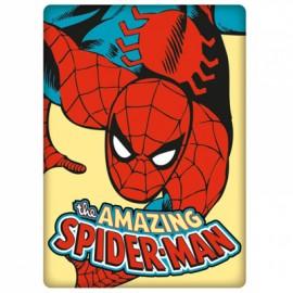 SPIDERMAN - MAGNET : Logo
