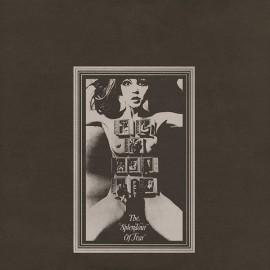 FELT : LP The Splendour Of Fear