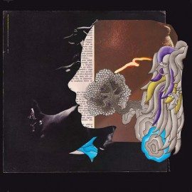 VARIOUS : LP Dirty French Psychedelics
