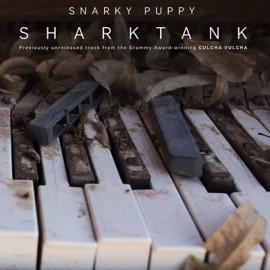 "SNARKY PUPPY : 10""EP Shark Tank"
