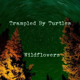 TRAMPLED BY TURTLES : Wild Flowers