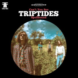 TRIPTIDES : Can't You See