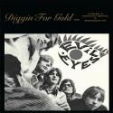 VARIOUS : LP Diggin' For Gold Volume 6